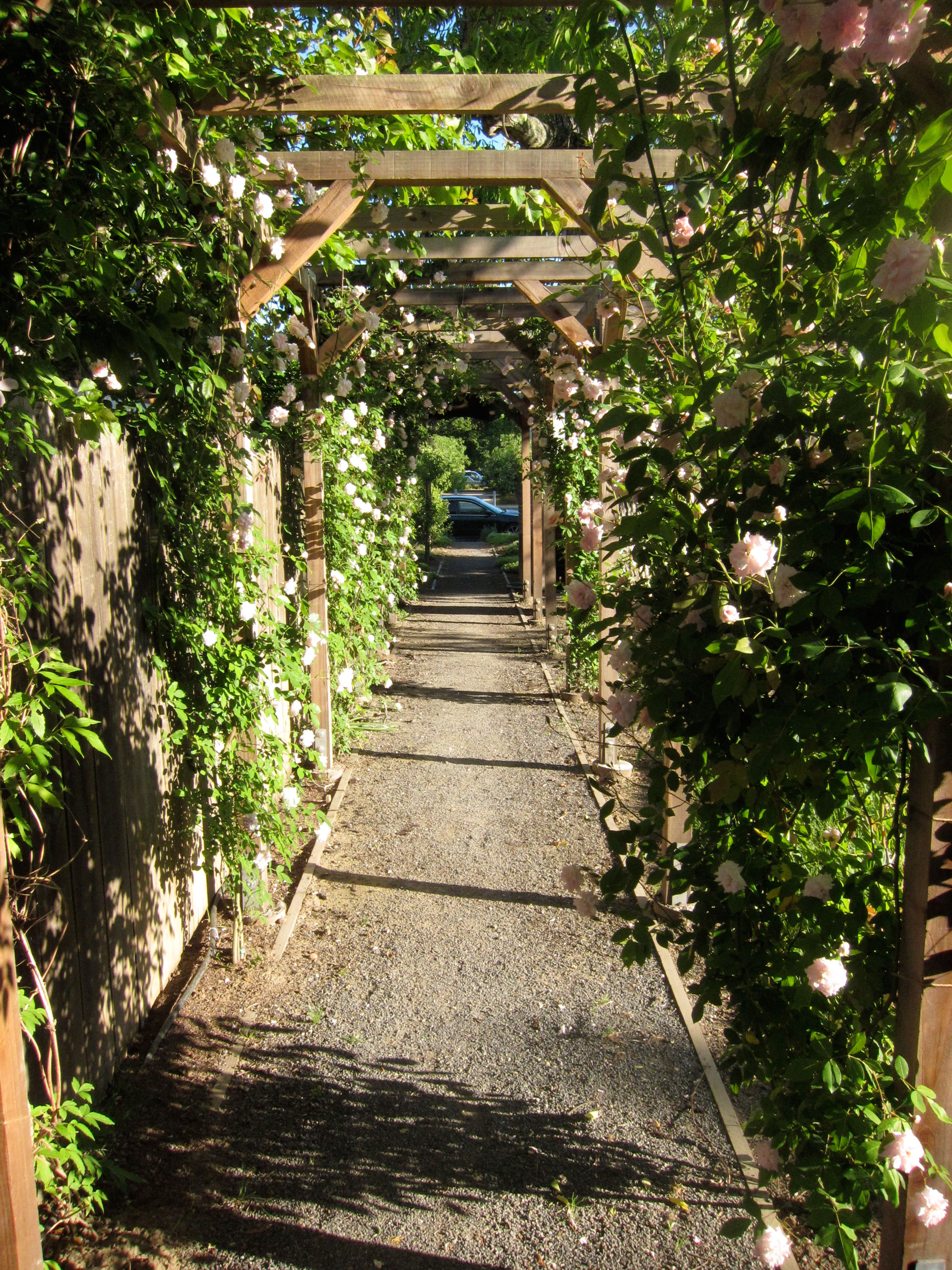 """essay on the garden of forking paths """"garden of forking paths"""" is a story that as it develops you are able to understand it fully at the beginning, i had some trouble following it, but as the story went on, the storyline became clearer in my mind."""